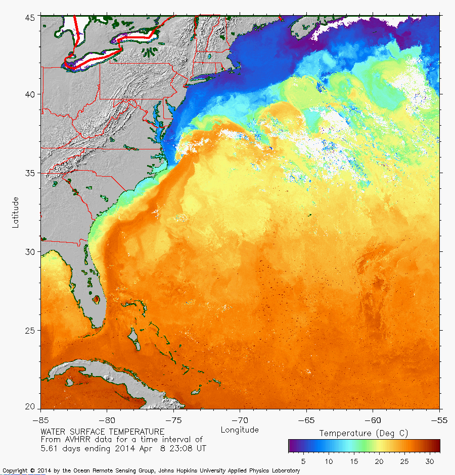 Gulf Stream as of April 8, 2014 - 7 day composite from Johns Hopkins http://fermi.jhuapl.edu/avhrr/gs/14apr/index_thumb.html